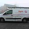 Rigole - Een nieuw concept voor de firma Rigole uit Kuurne Volledig uitgevoerd in snijfolies met vaste kleuren